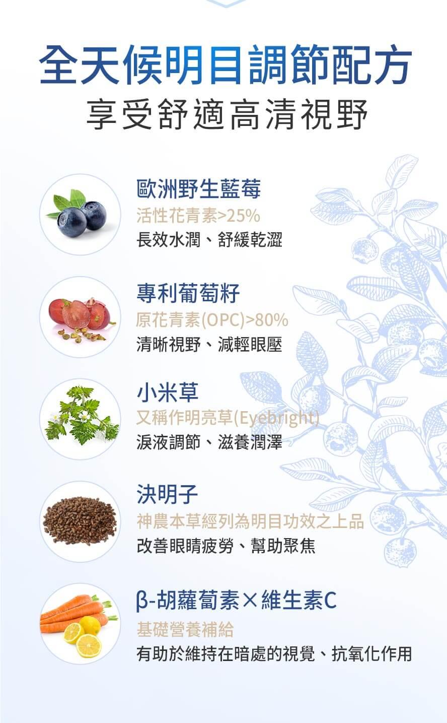 BHK's 藍莓山桑子 植物膠囊